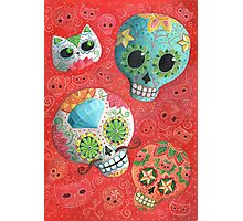 Colourful Sugar Skulls Photographic Print