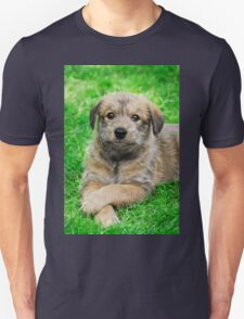 Cool-Puppy, Berger Picard  Unisex T-Shirt