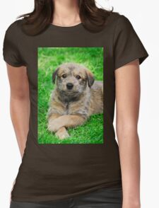 Cool-Puppy, Berger Picard  Womens Fitted T-Shirt