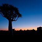 The Blue Hour - Namibia Africa by Beth  Wode