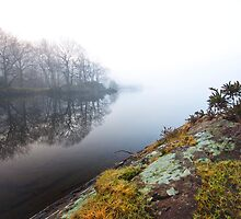 Misty Coniston water by Shaun Whiteman