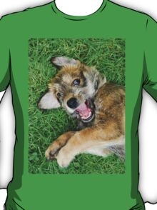 - Giggle - Berger Picard puppy T-Shirt