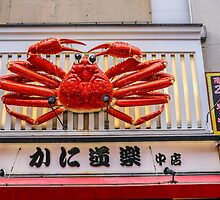 Crab in Osaka by Fike2308