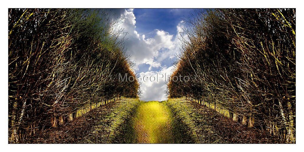 """""""What's that coming over the hill?? Is it a monster?!.... Is it a monster?!!!"""" (Hitchin Landscape) by MoGeoPhoto"""