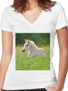 Foal in a sea of tall grass Women's Fitted V-Neck T-Shirt