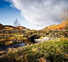 Watendlath Bridge - Cumbria by David Lewins