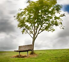 Alone  by Aaron Radford