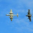 Gloster Meteor and de Havilland Venom by Yvonne Falk Ponsford