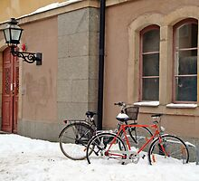 Bicycles by Paola Svensson