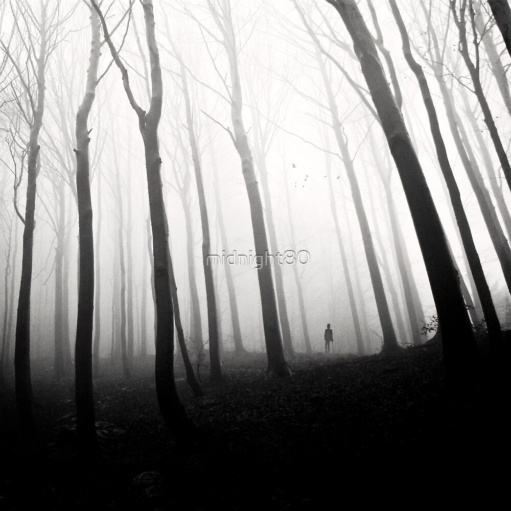 Ghost Of Perdition by midnight80