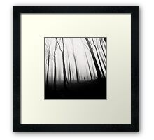 Ghost Of Perdition Framed Print