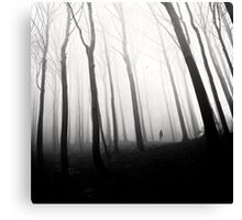 Ghost Of Perdition Canvas Print