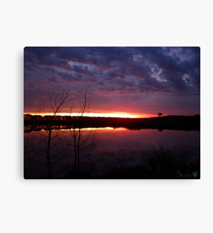 Death of Day Canvas Print