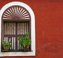 Window, Fontainhas, Panaji, Goa by Rachel  Devenish Ford