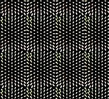 Green Lights Follow Me - Sydney Vivid Festival by Bryan Freeman