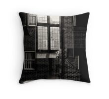 Window watching into the souls of glass Throw Pillow