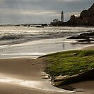 Lighthouse View by George Davidson