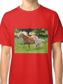Haflinger mare with foal running  Classic T-Shirt