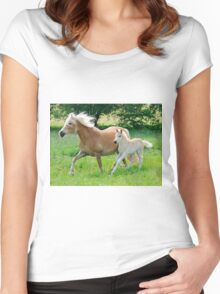 Haflinger mare with foal running  Women's Fitted Scoop T-Shirt