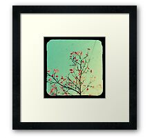 Reaching for aqua skies Framed Print