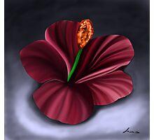 Best Fantasy Flower 4 Photographic Print