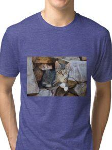 Cutie kitten on a wood pile Tri-blend T-Shirt