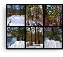 Snow-scenes  from  Winding  River  Canvas Print