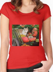 Cat and pumkins Women's Fitted Scoop T-Shirt