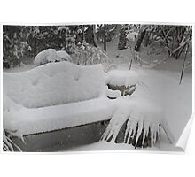 White Bench Poster