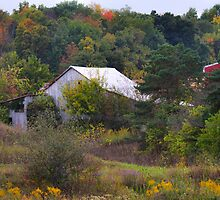 Autumn landscape by mltrue