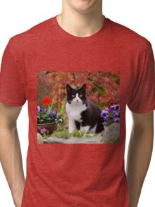 Tuxedo cat in front of a Japanese Maple Tri-blend T-Shirt