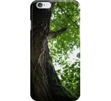 Fey Foliage iPhone Case/Skin