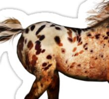 An Appaloosa Called Ginger'... Sticker