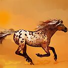 An Appaloosa Called Ginger'... by Valerie Anne Kelly