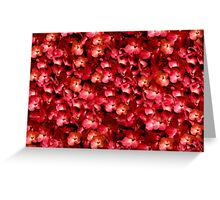 Warm Floral Collage Print Greeting Card