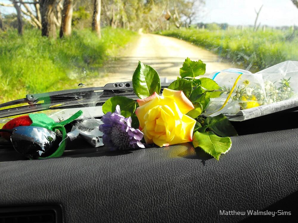 Sunday drive gathering flowers by Matthew Walmsley-Sims