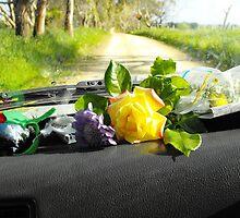 Sunday drive gathering flowers by Matthew Sims