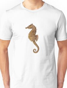 Northern Seahorse (Hippocampus hudsonius)  Unisex T-Shirt