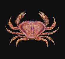 Dungeness Crab (Metacarcinus magister) One Piece - Short Sleeve