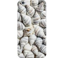 Seashells iPhone Case/Skin