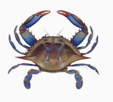 Blue Crab (Callinectus sapidus) One Piece - Long Sleeve