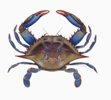 Blue Crab (Callinectus sapidus) Baby Tee