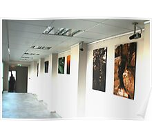 Again from my exhibition now Poster