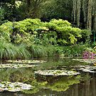 Claude Monet's Gardens in Giverny, France  by Deb22