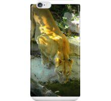Thirsty Lion iPhone Case/Skin