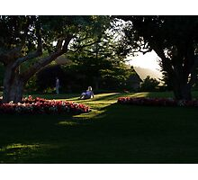 Summer Evening Photographic Print