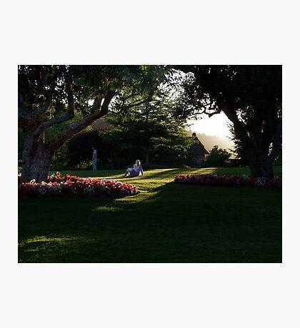 Summer Evening Photographic Print
