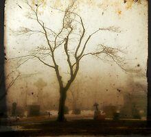 Fog by gothicolors