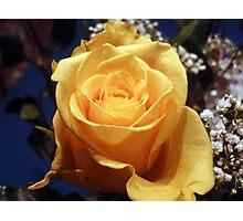 Yellow Freshness Photographic Print