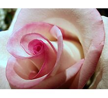 White/Pink softness Photographic Print